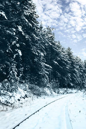 Railroad in snow forest  Tinted picture photo