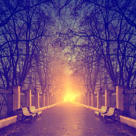 Footpath in a fabulous autumn city park photo