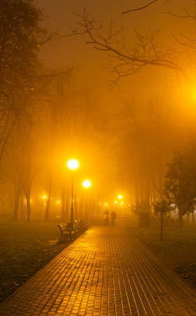 Romantic and happiness scene of couples foggy evening in the park photo