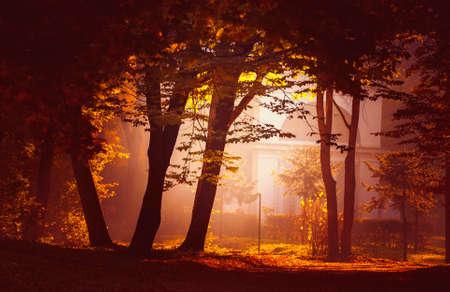 fabulous: fabulous autumn city park Stock Photo
