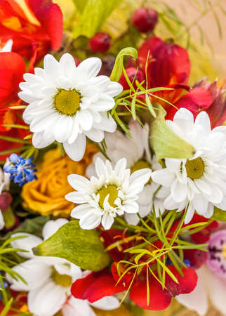 Bunch of flowers with small depth of field Stock Photo