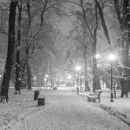 fabulous: Footpath in a fabulous winter city park Stock Photo