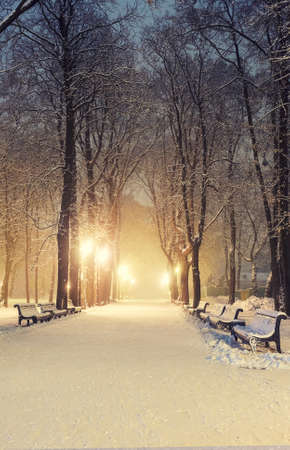 Footpath in a fabulous winter city park Stock Photo