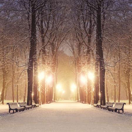 Ścieżka w parku miejskim wspaniały zimowy