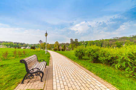 summer trees: Beautiful summer landscape with field of green grass and bench in the city park