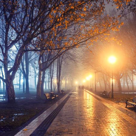 дождь: люди в осенней городской парк ночью