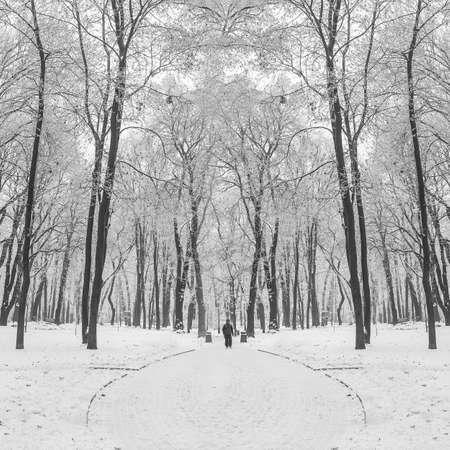 carretera: sendero en un parque de la ciudad fabulosa de invierno