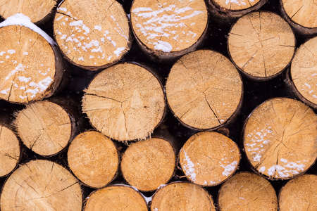Background of dry chopped firewood logs stacked up on top of each other in a pile in winter