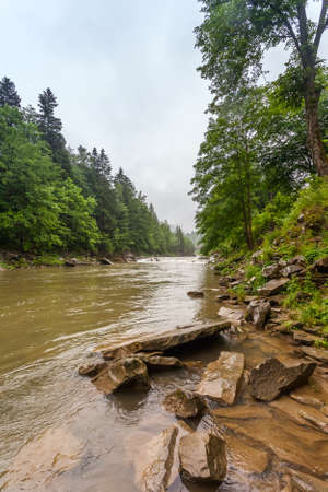 Summer landscape with a mountain river. Majestic Carpathian forest.