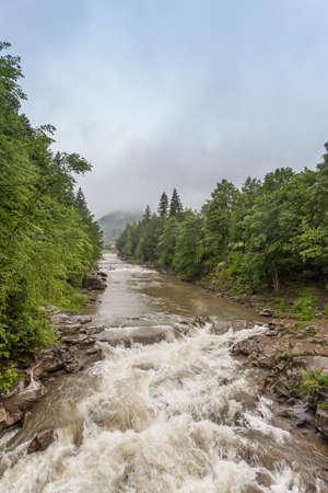 Flowing water of Carpathian mountain stream.