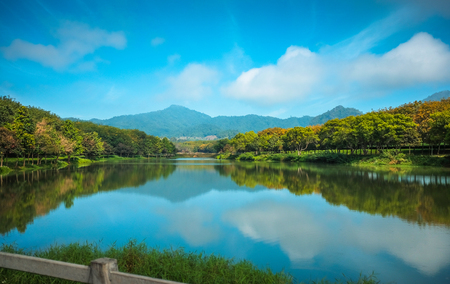 Pond, trees, sky and mountains