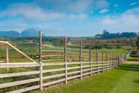 Wooden fence and vast grassland on the farm