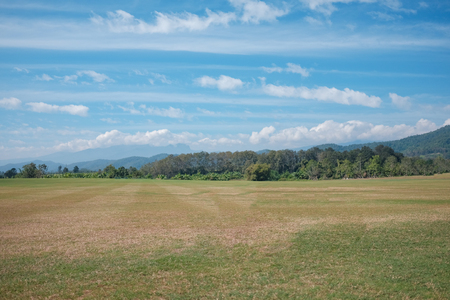 Vast lawn and mountain views