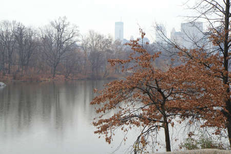 Central park in Manhattan, New York Stock Photo