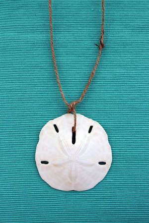 sand dollar: A sand dollar twine necklace on a textured blue background