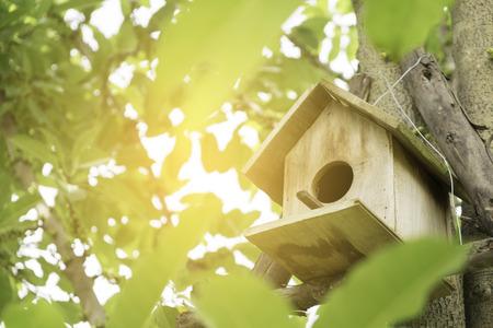 Bird house and sunlight.