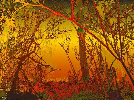 nostalgy: Autumn nostalgic background with silhouettes of trees