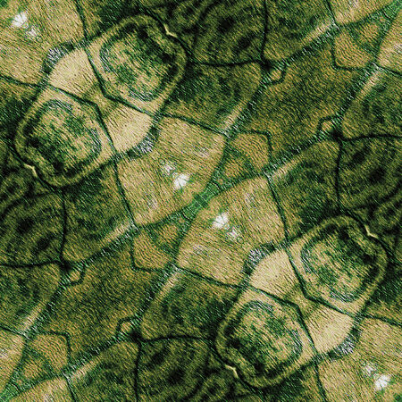 Abstract green and brown pattern resembling a snake skin photo