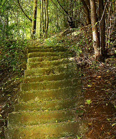 crumbling: Romantic  old crumbling stairs in the forest