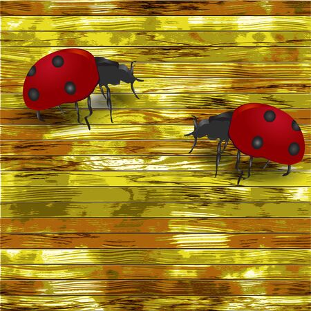 Grunge wooden background with ladybirds Vector