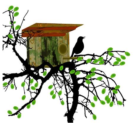 Ahorn-Baum mit Holz-Voliere und Vogel Silhouette Standard-Bild - 41127447