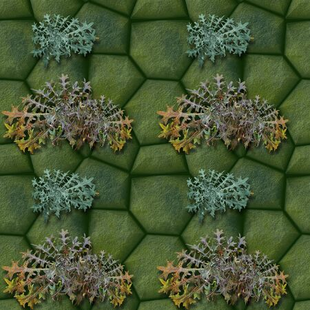 road paving: Seamless pattern of green stones and Thistles Stock Photo