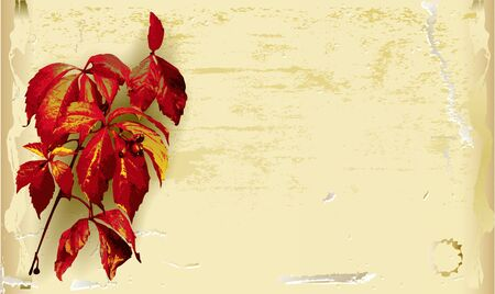 torn metal: Vintage scratched paper background with autumn leaves Illustration