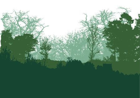 silhouttes: Wild forest landscape with green grass silhouttes of trees and plants