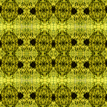 scalloped: Abstract seamless pattern with Scalloped structure resembling reptile skin Stock Photo