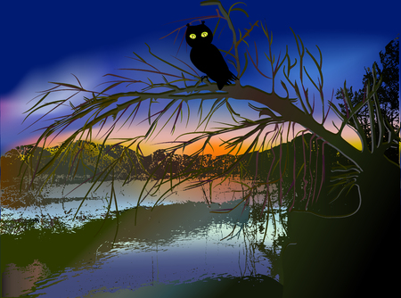 creek: Dark scary halloween landscape with a creek, silhouette of tree and owl at sunset