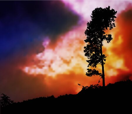 lone tree: Dark sky with storm clouds and silhouette of a lone tree