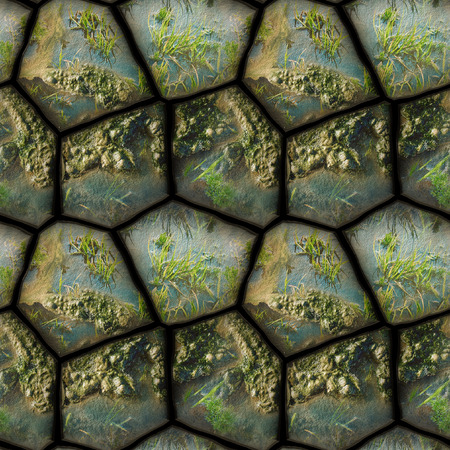 dewy: Abstract seamless pattern of stones, mud and water plants Stock Photo