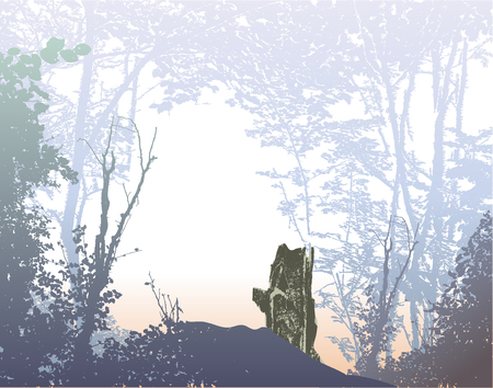 stumps: Wild forest landscape with plants, trees and stumps Illustration