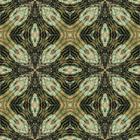 scalloped: Abstract seamless reptile pattern with green, brown and red Scalloped reptile texture Stock Photo