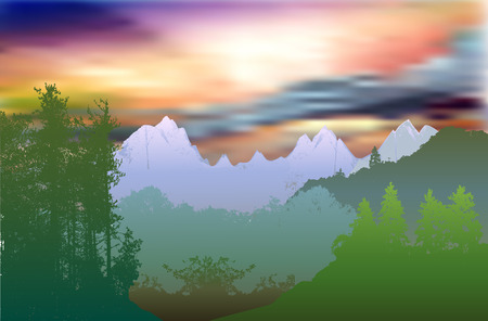 panoramic landscape: Forest panoramic landscape with sky, clouds, trees and plants Illustration