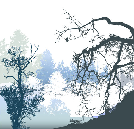 Winter panoramic landscape with bare and snowy trees and plants. White, blue, gray and black silhouettes of trees