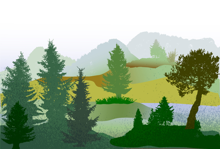 conifers: Autumn wild forest landscape with Conifers, grass and hills. Panoramic green, brown and blue autumn landscape with first snow