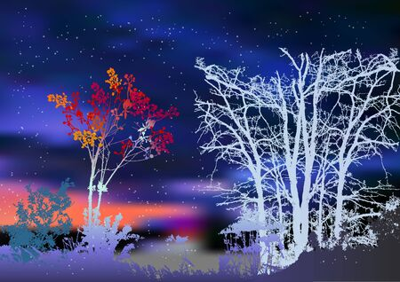 dramatic sky: Night winter landscape with snowy trees and plants. Silhouettes of bare trees, bush of rowan and dramatic night sky with flying snowflakes Illustration