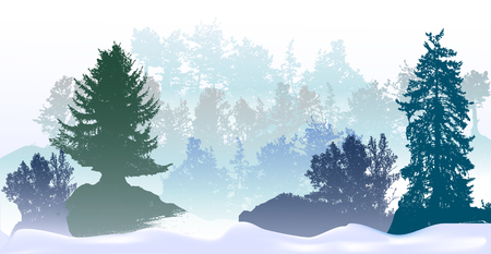 drifts: Panoramic winter landscape with snowy trees and Snow Drifts. Silhouettes of Spruces, bushes and snowy forest