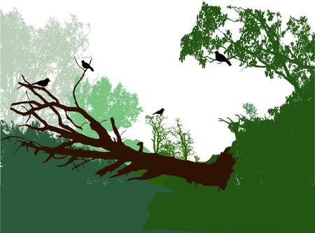 Paesaggio forestale panoramico con albero caduto, cespugli e uccelli. Sagome verdi, marroni e nere di alberi, piante e uccelli