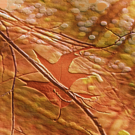 Autumn relief embossed natural background with leaf between twigs. Red, brown and orange natural background with autumn motif. 3d illustration, Stok Fotoğraf