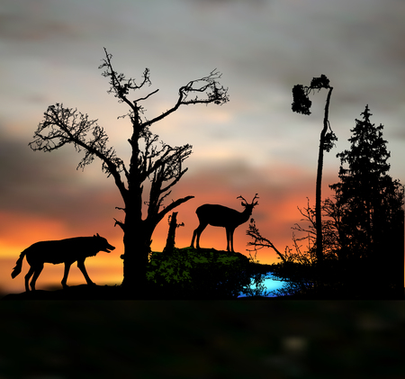 Dark night forest landscape with silhouettes of wild animal and trees. Иллюстрация