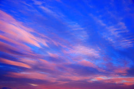 Pink clouds are floating on a bright blue sky. The evening horizon glows with multicolor. Vanilla romantic mood in the early morning or evening at sunset.