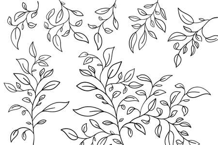Vector hand drawn set of various silhouette branches with leaves in outline technique on the white background.