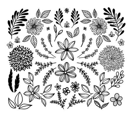 big set of botanical sketches and line doodles. hand drawn design floral elements. isolated flowers, leaves, herbs for decoration prints, labels, patterns. vector illustration.
