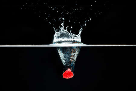 Raspberry falls deeply under water with a big splash.