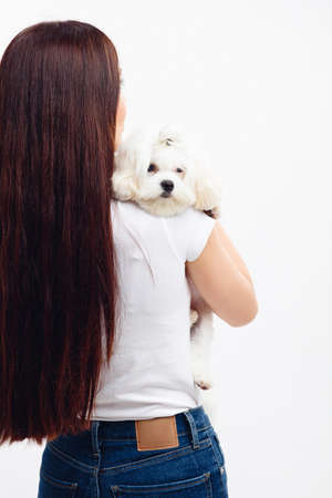 Cute white Maltese puppy put her head on the shoulder of her owner