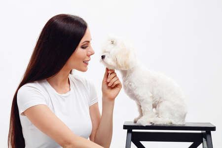 Beautiful brunette girl with long hair sits next to white Maltese puppy and looks softly at the dog