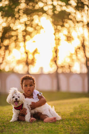 Sweet little African American girl wearing cute pink dress and walks on the grass outdoor, hugs her white puppy Stok Fotoğraf