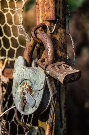 old padlock on metal gate photo